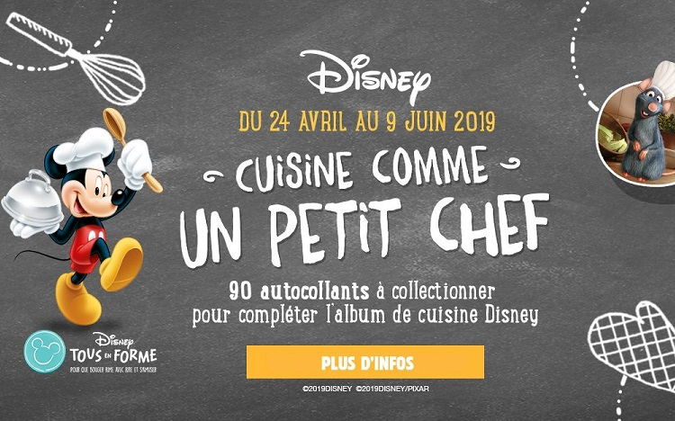 Netto Album Panini Et Autocollants Disney A Collectionner